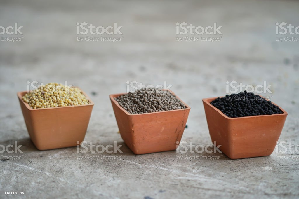 Three color of  Diammonium phosphate (DAP) in clay pots stock photo
