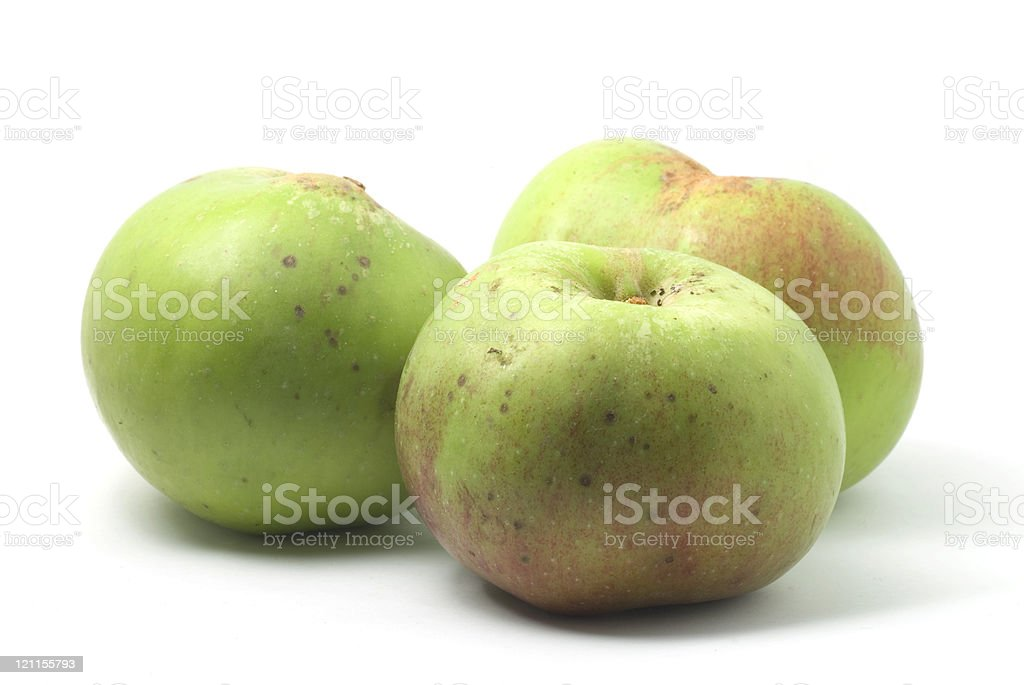 Three Cooking Apples stock photo