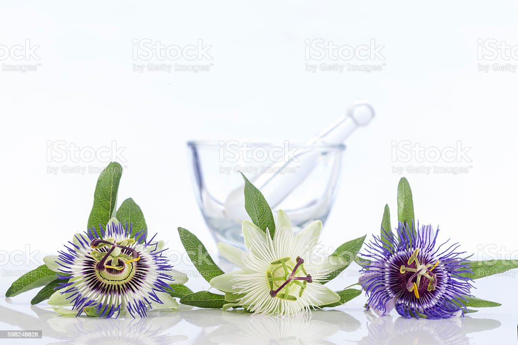 three coulored passion flower with mortar stock photo