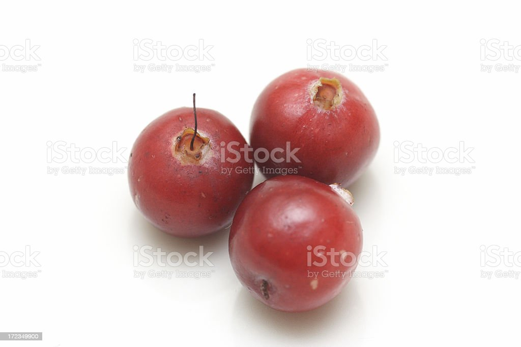 Three cranberries (ver.2) royalty-free stock photo
