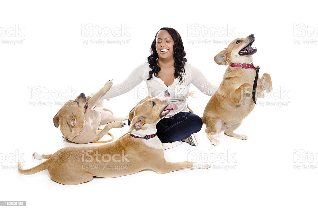 Three Dogs and a Pretty Woman royalty-free stock photo