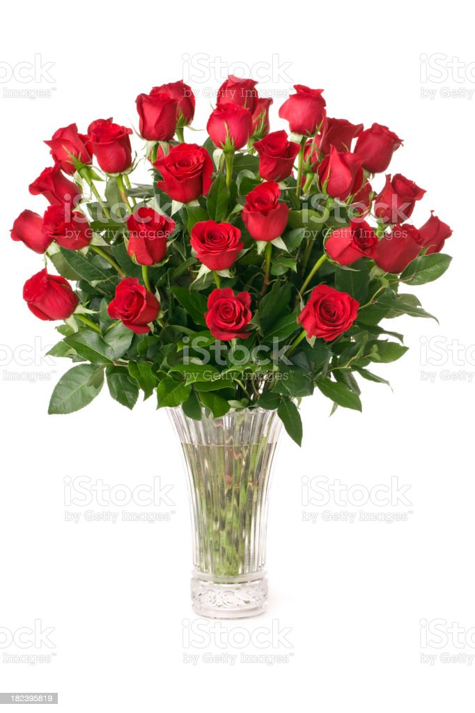 Three Dozen Red Roses royalty-free stock photo