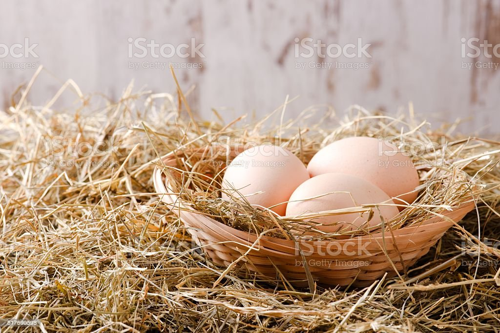 Three eggs in a straw nest stock photo