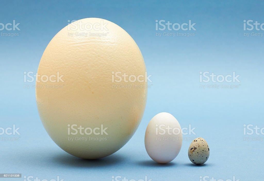 Three eggs stock photo