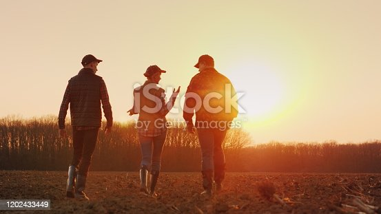 Three farmers go ahead on a plowed field at sunset. Young team of farmers.
