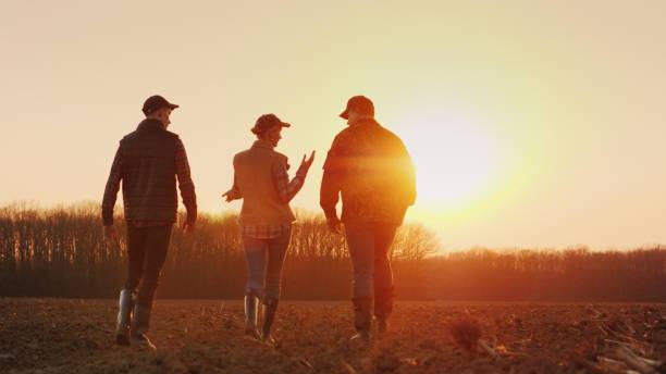 drei bauern gehen bei sonnenuntergang auf ein gepflügtes feld. junges bauernteam - bauernberuf stock-fotos und bilder