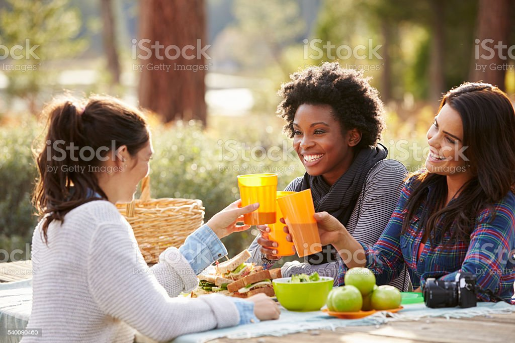 Three female friends at a picnic table making a toast stock photo