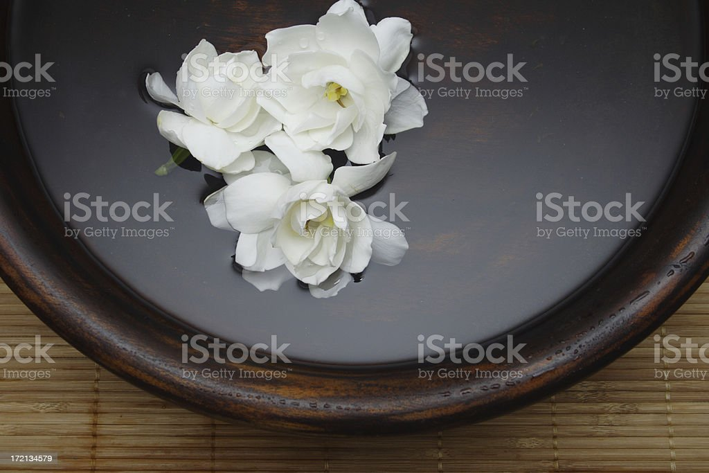 three flower therapy stock photo