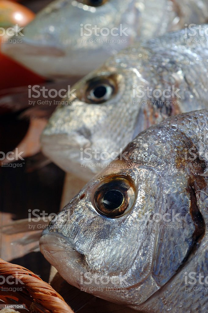 Three fresh fish close up royalty-free stock photo