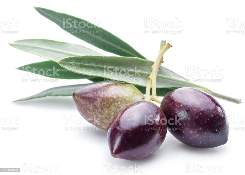Three fresh olives with leaves on the white background. - foto de acervo