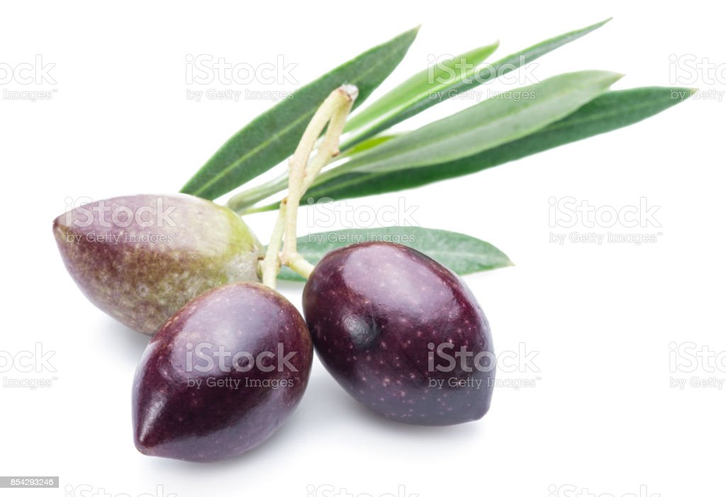 Three fresh olives with leaves on the white background. stock photo