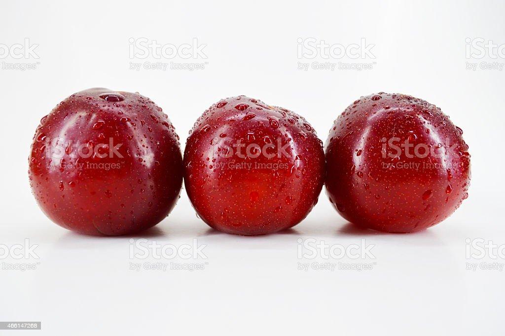 Three fresh plums royalty-free stock photo