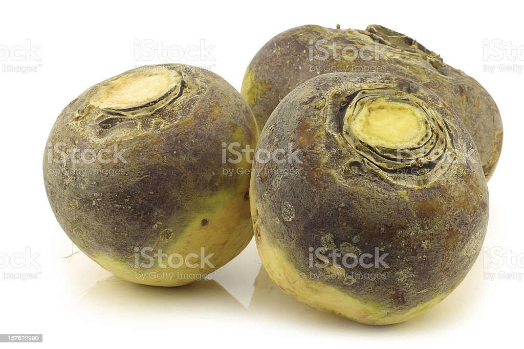 three fresh turnips(brassica rapa rapa) stock photo