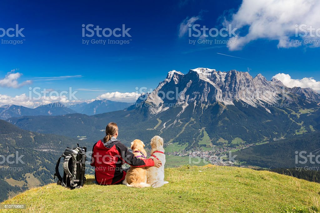 Three friends, man puts arm to his dogs at Zugspitze stock photo