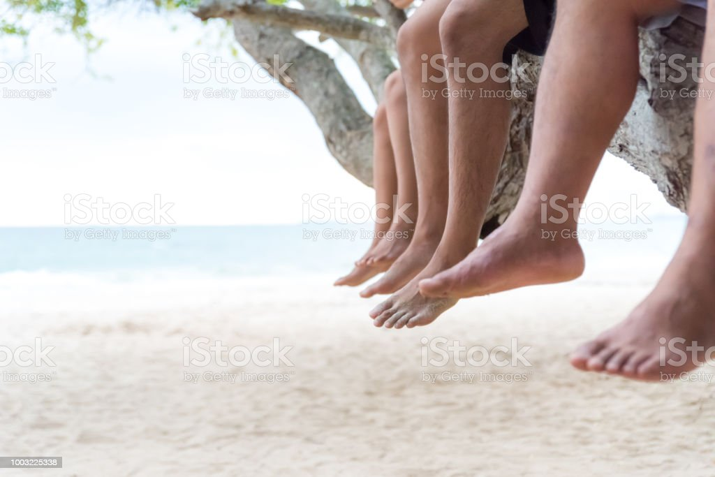 Three Friends Relaxing Sit Side By Side On Tree Branch On The Beach With Blue Sky Background Friendship Day And Love Concept Stock Photo Download Image Now Istock