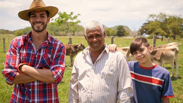Three Generations Family Portrait Of Farmers In Farm Everyday life for farmers with cows in the countryside. Peasants work in Latin America with livestock in family country ranch. Portrait of happy grandfather, dad and child smiling. farm worker stock pictures, royalty-free photos & images