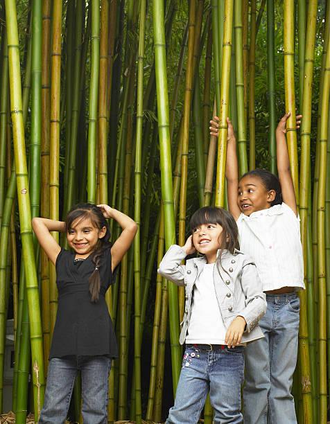 Three girls (5-7) standing in Japanese timber bamboo grove, smiling stock photo