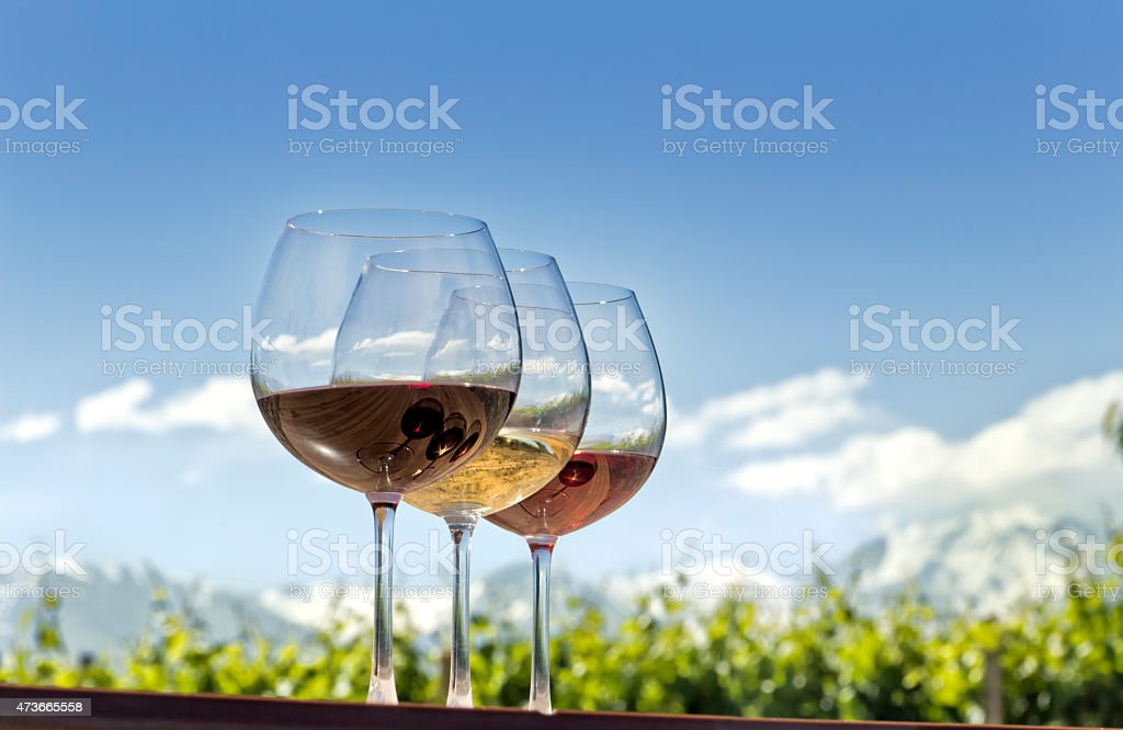 Three glasses of wine with the background of the vineyard  stock photo