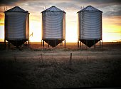 Three Grain Bins With a Sunset Background