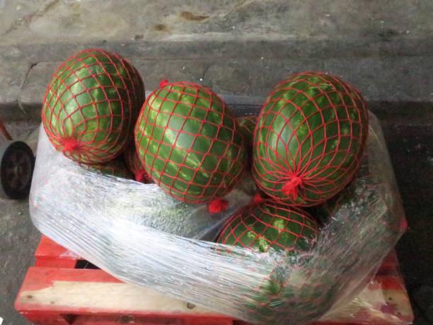 drie groene watermeloenen verpakt in rode netten en kunststof tot op een pallet foto