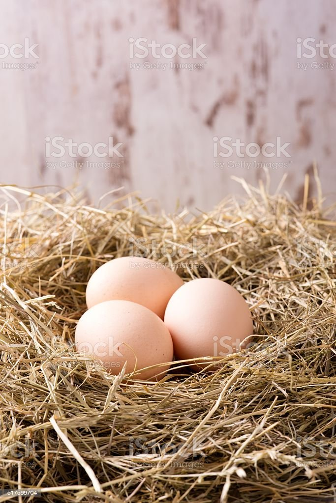 Three hen eggs placed on haystack stock photo