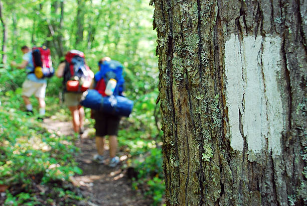 Three hikers on the Appalachian Trail Backpackers hike past a white stripe on the Appalachian Trail appalachian trail stock pictures, royalty-free photos & images