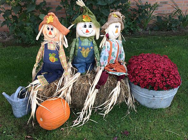 Three Holloween scarecrows stock photo
