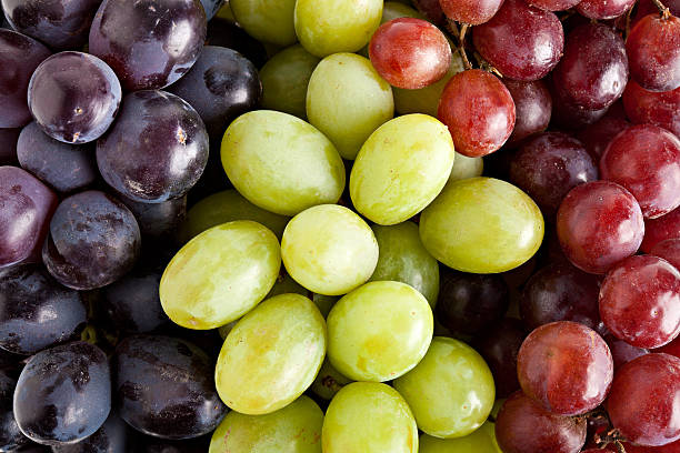 Three Kinds Of Grapes stock photo