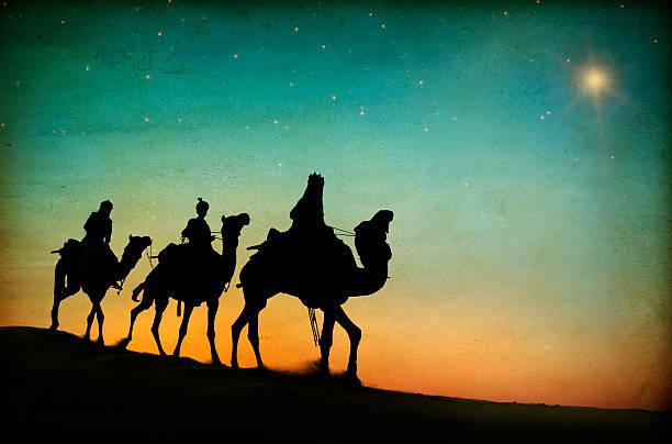 três reis deserto ornithogalum umbellatum nativity conceito - reis magos imagens e fotografias de stock