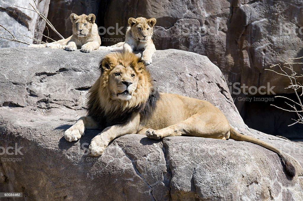 three kings stock photo
