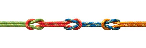 Three knots stock photo