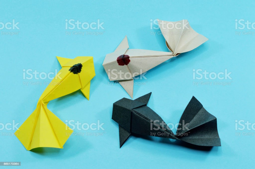 three koi fishes stock photo