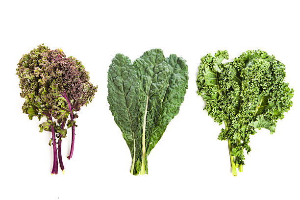 Three leafy kale plants Subject: Several varieties of fresh kale forming top corner border of the page, leaving white background for copy in lower half of page. kale stock pictures, royalty-free photos & images