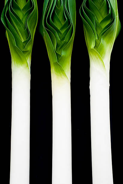 Three Leeks stock photo