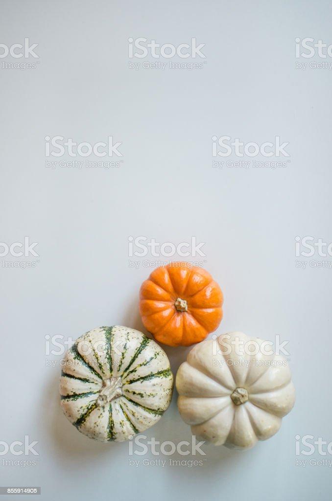 Three Little Pumpkins stock photo