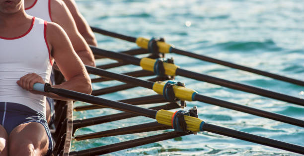Three male athletes rowing across lake in late afternoon stock photo