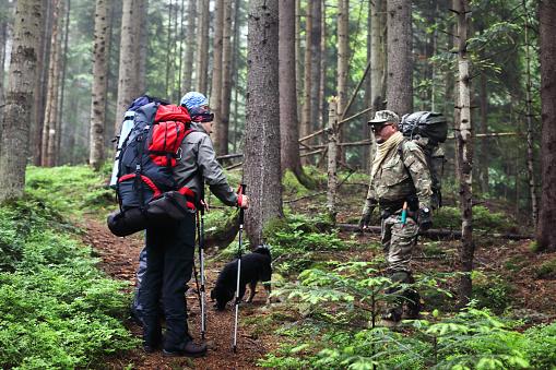 Drie Mannen Wandeling In Het Bos Met Rugzak Voor Trekking Stockfoto en meer beelden van Alleen mannen