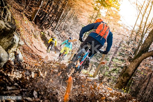 Rear view of three mountain biker riding up a hill on a leafy trail in the woods in autumn.