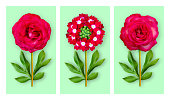 Three offbeat flowers on a pastel green background. Composition of light red roses and verbena with peony leaves. Art object. Minimalist style poster.