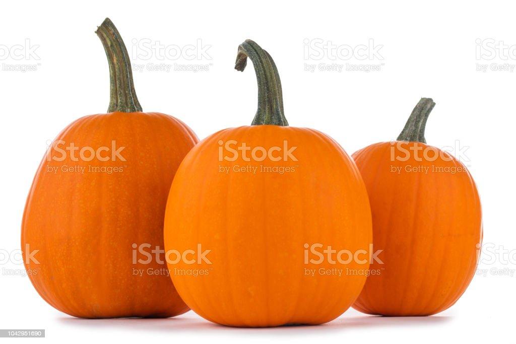 Three orange pumpkins stock photo