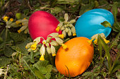 Three painted Easter eggs hidden in the grass
