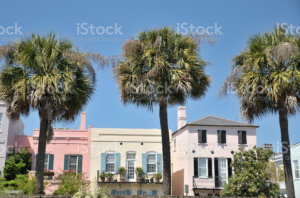Three Palms, Charleston, South Carolina royalty-free stock photo