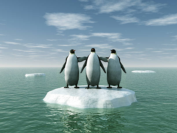 Three penguins on an ice floe stock photo