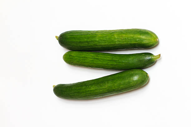Three Persian Cucumbers on White Background Three organic Persian cucumbers on a white background, with lots of copy space. persian culture stock pictures, royalty-free photos & images