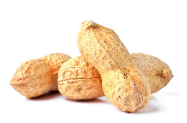 tre bitar av oskalade jordnötter isolerade på vit bakgrund - peanutbutter bildbanksfoton och bilder