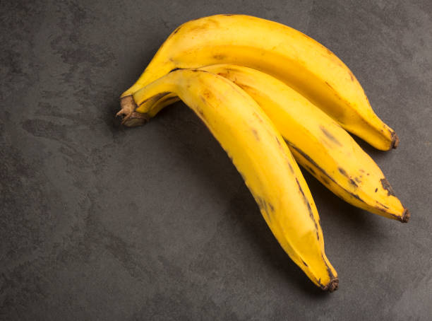 three plantain banana - musa x paradisiaca - maturo foto e immagini stock