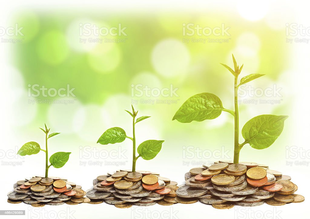 Three plants growing on coins  stock photo