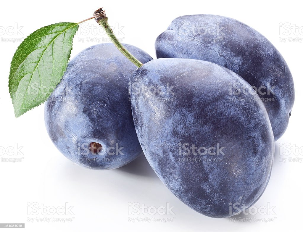 Three plums with leaf. stock photo