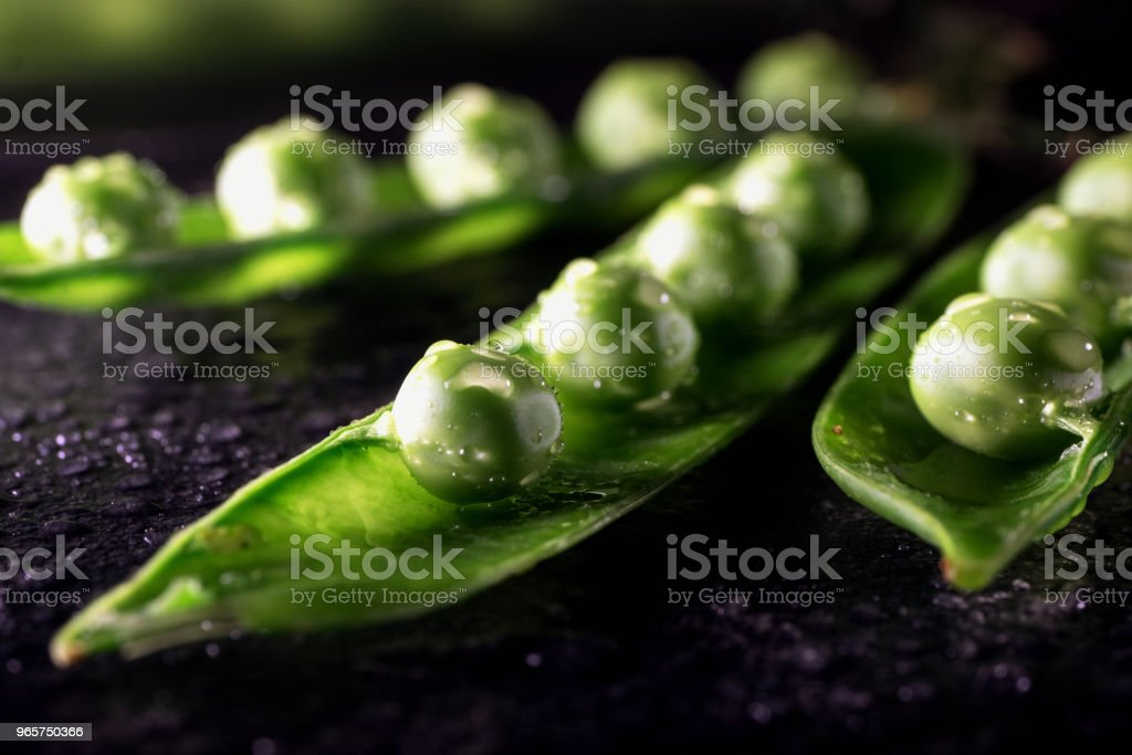 Three pods with peas covered with drops of water on dark table surface. - Royalty-free Back Lit Stock Photo