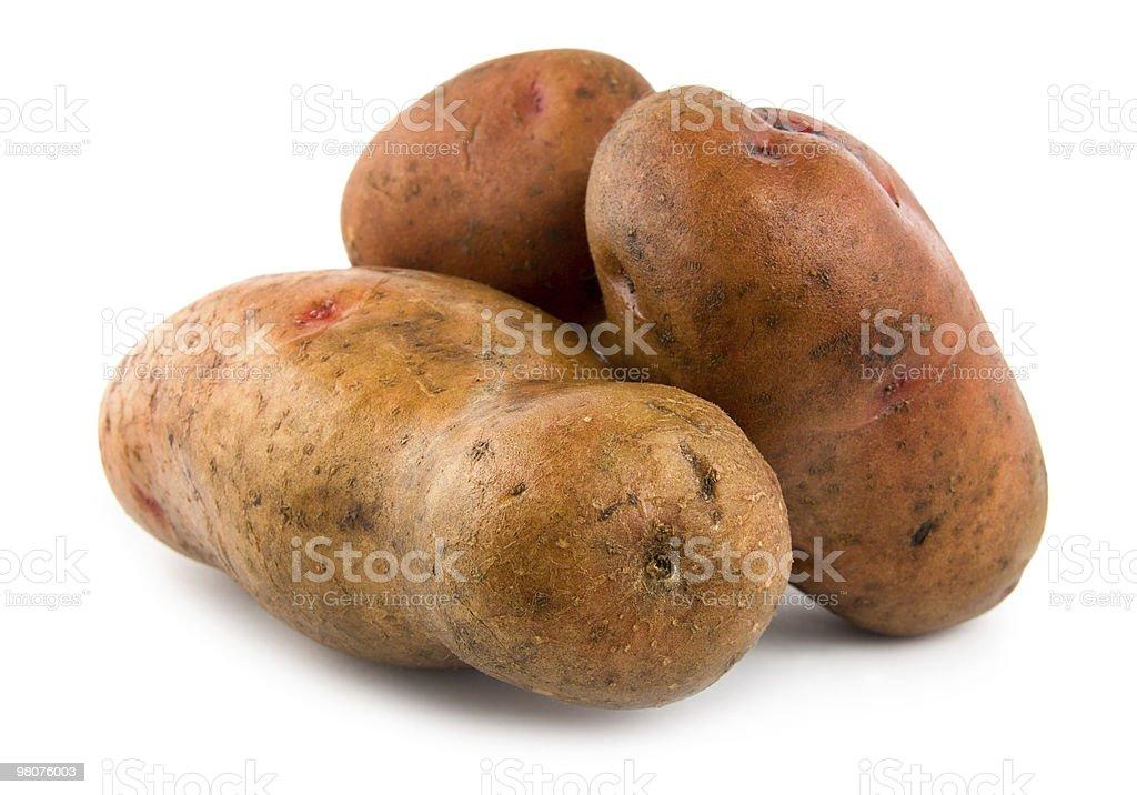 Three potatoes isolated royalty-free stock photo
